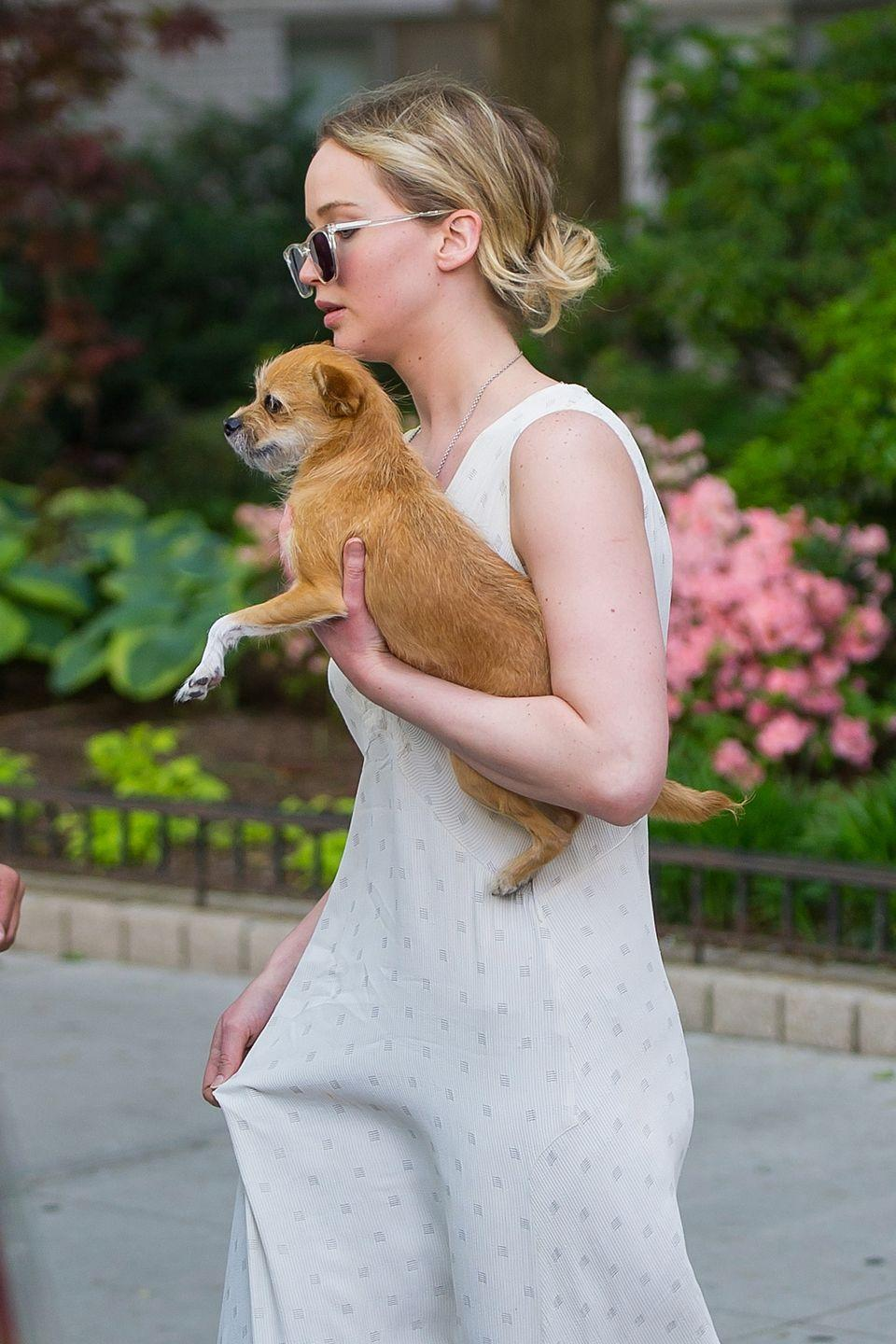 """<p>Lawrence's love for her dog, Pippi, knows no bounds. In her 2017 cover interview with <a href=""""https://www.vogue.com/article/jennifer-lawrence-vogue-september-issue-2017-cover"""" rel=""""nofollow noopener"""" target=""""_blank"""" data-ylk=""""slk:Vogue"""" class=""""link rapid-noclick-resp"""">Vogue</a>, it was revealed that an oil painting of Pippi hangs in the Silver Linings Playbook actresses' living room. </p>"""