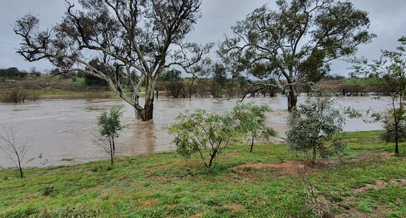 Yass, NSW, is pictured after August rainfall.