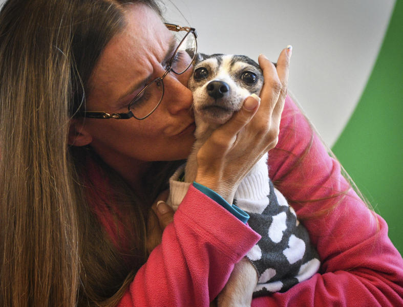 """Katheryn Strang is reunited with her toy fox terrier """"Dutchess"""" at Humane Animal Rescue on Friday, Oct. 11, 2019 in Pittsburgh.  Humane Animal Rescue says the 14-year-old named Dutchess was found hungry, shivering and in serious need of a nail trim under a shed on Monday.  The property owner took the dog to a Humane Animal Rescue location, where veterinarians were able to locate a microchip and trace the dog back to its owners in Boca Raton, Florida.  (Steve Mellon/Pittsburgh Post-Gazette via AP)"""