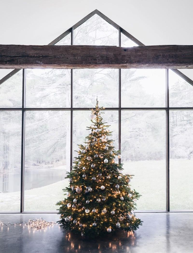 Seamless For Christmas Trees Now Exists