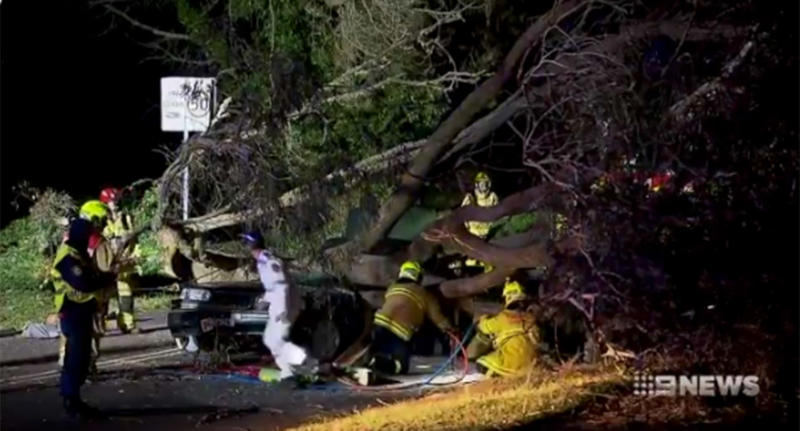 Pictured are emergency crews working to try and save NSW paramedic Dearne Fulcher and her son crushed by a fallen tree.