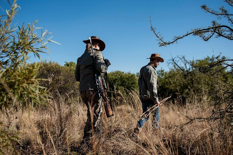 Adri Kitshoff, chief executive officer of Professional Hunters' Association of South Africa (PHASA), and profesional hunter Tavi Fragoso (R) are seen during a hunt at the Iwamanzi Game Reserve in Koster in June 2015 (AFP Photo/Stefan Heunis)