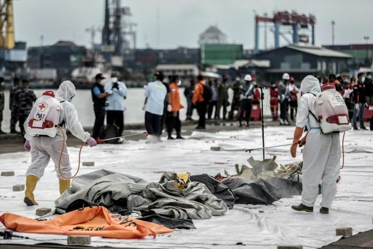 The probe into the crash - the latest in a string of disasters for Indonesia's aviation sector - is likely to take months