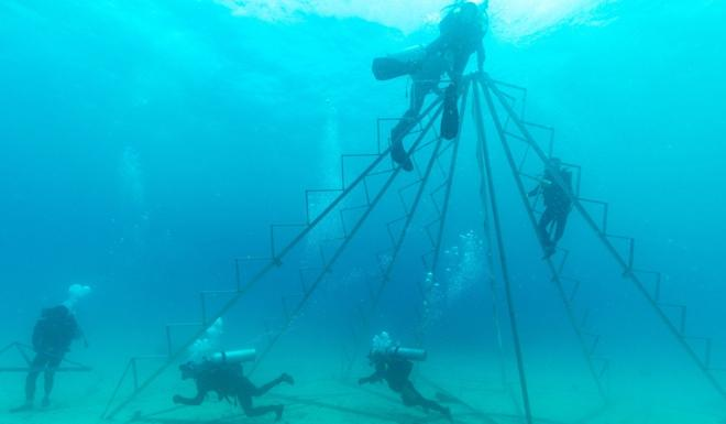 Divers set up stands for corals in waters off Hainan province. Photo: Xinhua