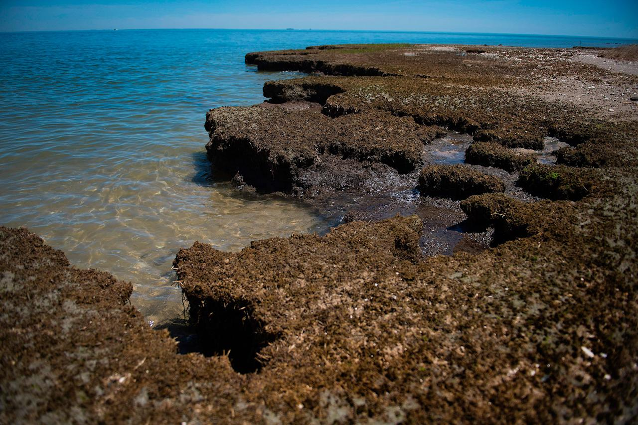 <p>An area in the Uppards called Canaan where erosion has taken away what was once a settlement area with homes in Tangier, Virginia, May 16, 2017, where climate change and rising sea levels threaten the inhabitants of the slowly sinking island.<br /> (Jim Watson/AFP/Getty Images) </p>