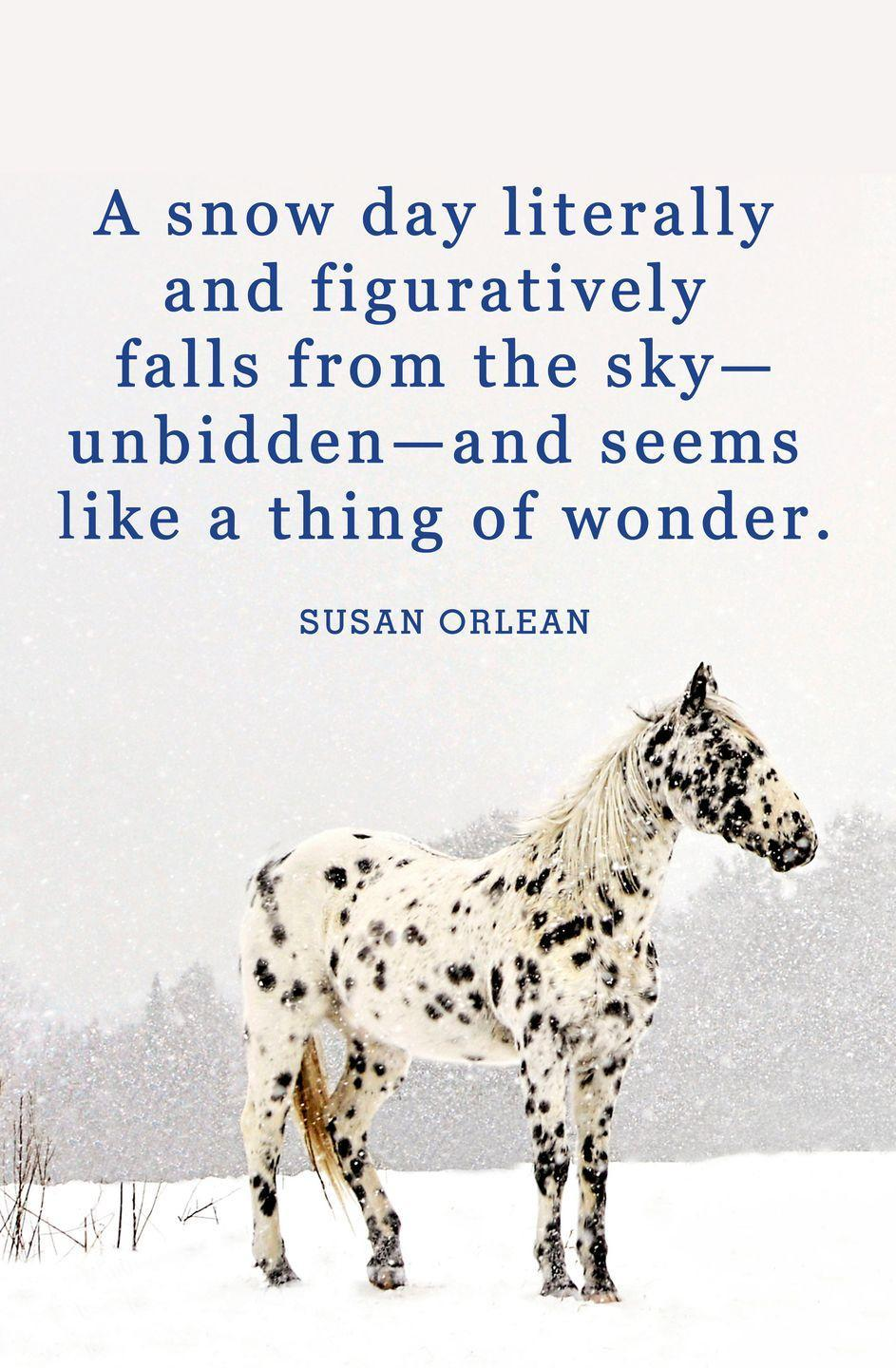"<p>""A snow day literally and figuratively falls from the sky—unbidden—and seems like a thing of wonder.""</p>"