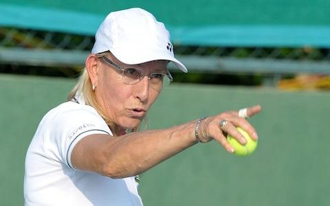 <span>Martina Navratilova has been outspoken in her criticism of Court</span> <span>Credit: AFP </span>