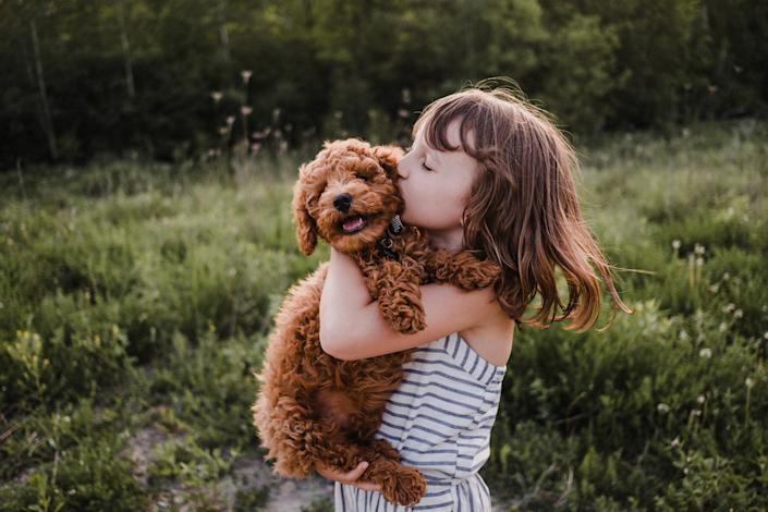 There are certain precautions you can take to protect your pooch from theft. (Getty Images)