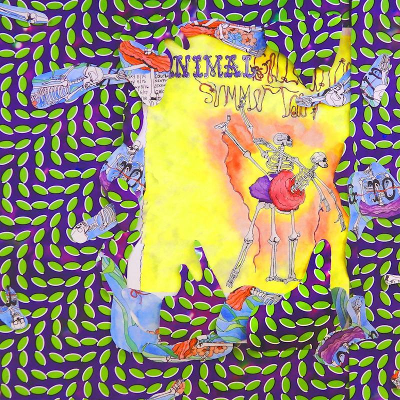 Animal Collective Ballet Slippers live album cover artwork