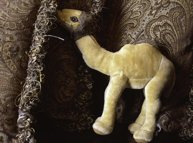 "<p>""This was a Christmas gift from Iraq. My daughter has this stuffed animal like this. She doesn't go anywhere without it…¦ She calls him Camel. She said, 'Mommy, that's all I have left of Daddy.' Right now, it needs to be stitched up and she needs it to get stitched, but she doesn't want anybody touching it."" From a conversation with Linda Lake, wife. (Photograph by Inbal Abergil) </p>"