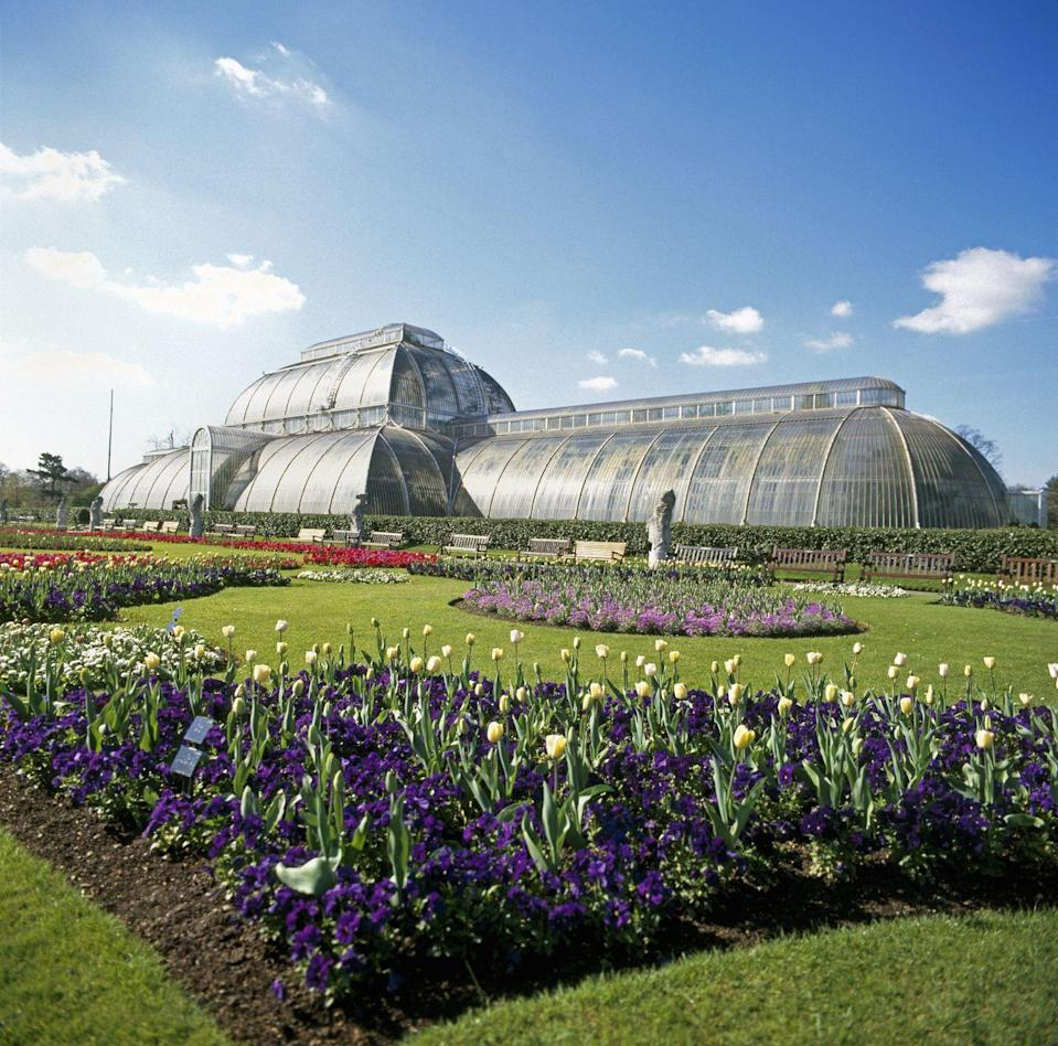 "<p>This world-famous site is definitely worth a visit if you're in the city. With over 50,000 plants, breathtaking displays on year-round (not to mention <a href=""https://www.housebeautiful.com/uk/garden/a32955912/christmas-at-kew/"" rel=""nofollow noopener"" target=""_blank"" data-ylk=""slk:Christmas at Kew"" class=""link rapid-noclick-resp"">Christmas at Kew</a>), a beautiful Victorian glasshouse and a stunning rose garden, it really does provide a wonderful day out. </p><p><a class=""link rapid-noclick-resp"" href=""https://www.kew.org/"" rel=""nofollow noopener"" target=""_blank"" data-ylk=""slk:BOOK NOW"">BOOK NOW</a></p><p><strong>READ MORE</strong>: <a href=""https://www.housebeautiful.com/uk/garden/a32955912/christmas-at-kew/"" rel=""nofollow noopener"" target=""_blank"" data-ylk=""slk:Christmas at Kew 2020: dates, tickets, lights trail and new coronavirus measures"" class=""link rapid-noclick-resp"">Christmas at Kew 2020: dates, tickets, lights trail and new coronavirus measures</a> </p>"