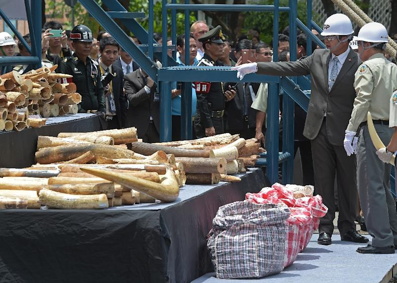 Thailand's Prime Minister Prayut Chan-O-Cha (2nd R) looks at pieces of ivory on display during a destruction of confiscated ivory exercise at Thailand's Department of National Parks, Wildlife and Plant Conservation in Bangkok on August 26, 2015 (AFP Photo/Pornchai Kittiwongsakul)
