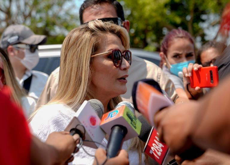Conservative former senator Jeanine Anez assumed power as interim president after Evo Morales fled following weeks of protests over his winning an unconstitutional fourth term and allegations of fraud