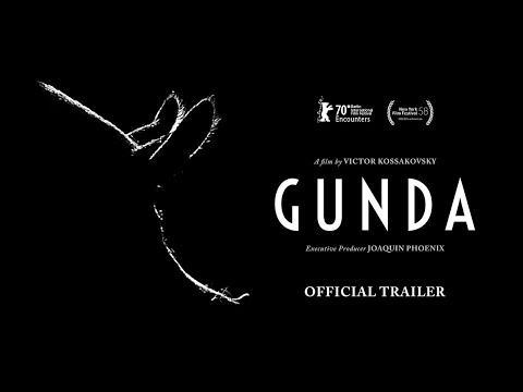 """<p>As intimate and up-close-and-personal as non-fiction cinema gets, Victor Kossakovsky's <em>Gunda</em> documents the life of a mother pig and her newborn brood on a farm. Beginning with those infants' births, the film—from a startlingly close proximity that exudes tenderness and empathy—captures animal life in all its drudgery and beauty, full of struggle, nurturing, conflict, exploration and abandonment. Also fixing its gaze on a one-legged chicken cautiously trudging through tall grass, and a herd of cows whose dark, mysterious eyes gaze intently at the camera, Kossakovsky's dialogue-free portrait conveys essential truths about survival, togetherness and love through protracted takes that creep around and alongside its four-legged subjects. The director's striking black-and-white imagery invites investigation and rumination about these familiar creatures, whose experiences and motivations are at once uniquely beastly and poignantly relatable, the latter of which comes to the fore in a finale of confused anguish and desperation. You'll never look at sows quite the same way again.</p><p><a href=""""https://www.youtube.com/watch?v=afZ6n7lwx48"""" rel=""""nofollow noopener"""" target=""""_blank"""" data-ylk=""""slk:See the original post on Youtube"""" class=""""link rapid-noclick-resp"""">See the original post on Youtube</a></p>"""