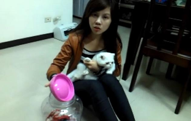 University student in Taiwan flamed for photo of pet cat put in plastic bottle. (YouTube screengrab)