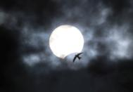 A partial solar eclipse is seen from Yevpatoria