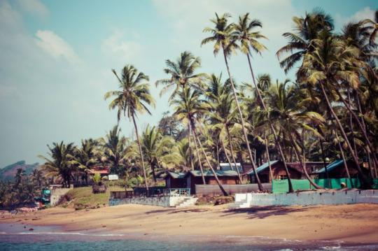 Best Places To Stay Near Anjuna Beach