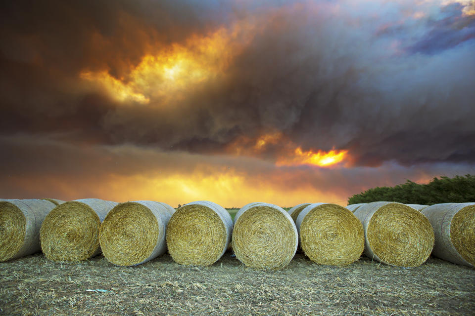 Hay can internally combust when it is packed tightly in a shed and is wet inside. Source: Getty