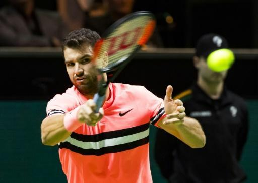<p>Dimitrov becomes top seed and top draw as Federer skips Dubai</p>
