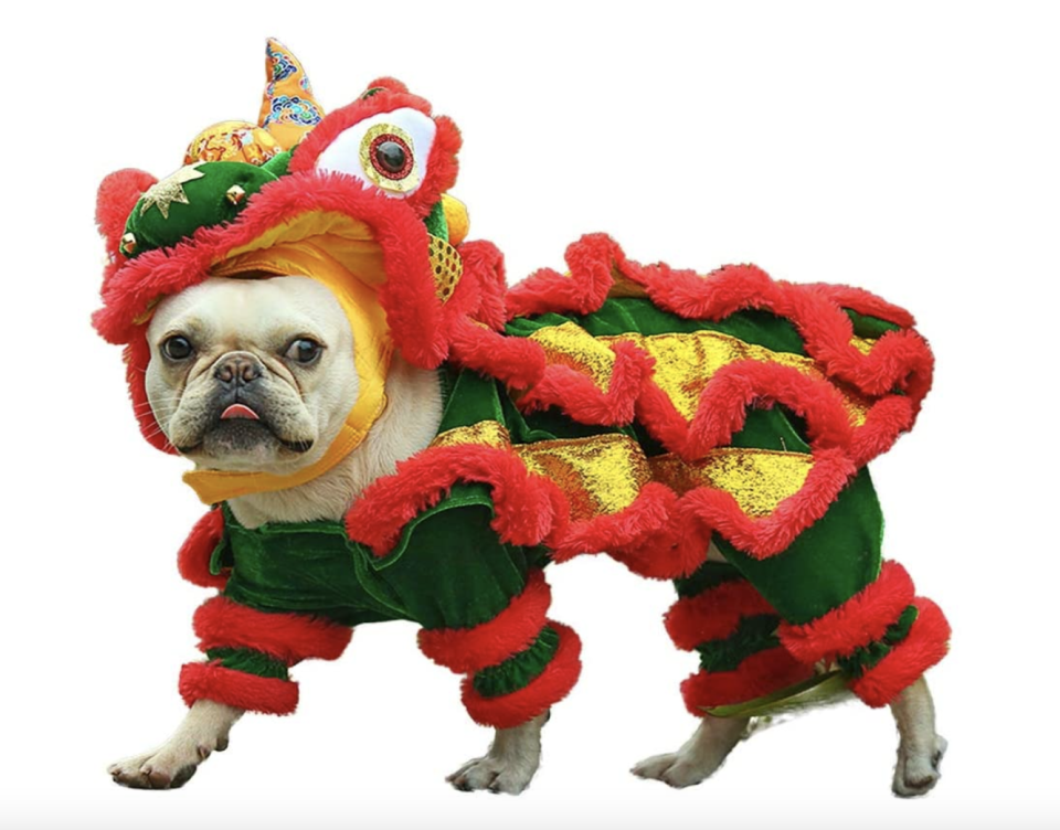 pug wearing green yellow and red Chinese New Year Style Costume