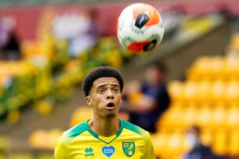 Newcastle sign Lewis from Norwich