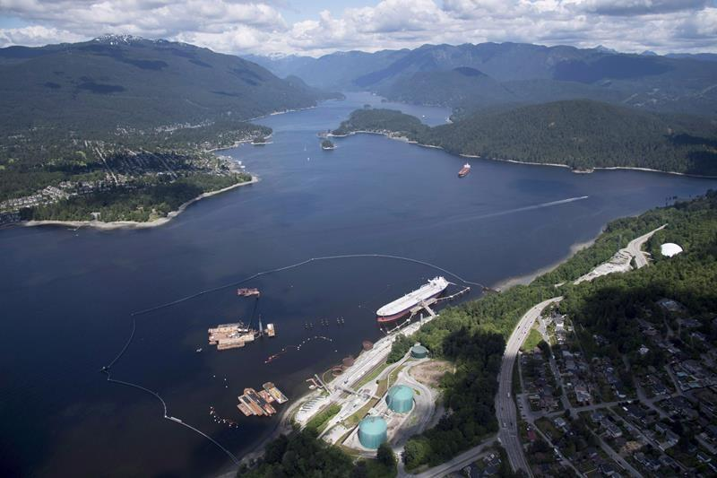 B.C. not trying to stop Trans Mountain, but aims to protect environment: lawyer