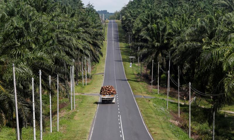 A truck carrying oil palm fruits passes through Felda Sahabat plantation in Lahad Datu in Sabah February 20, 2013. Kazakhstan mainly imports Malaysian palm oil, rubber products, furniture and electronic components, while exporting crude oil mainly, alongside ferrous metals and pipes. — Reuters pic