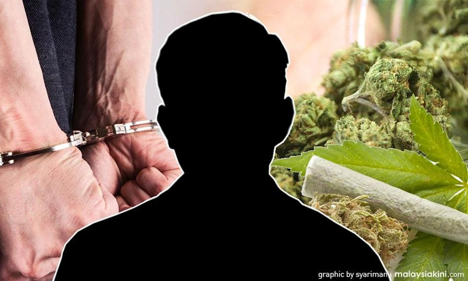 Cannabis advocacy groups call for drug policy reforms