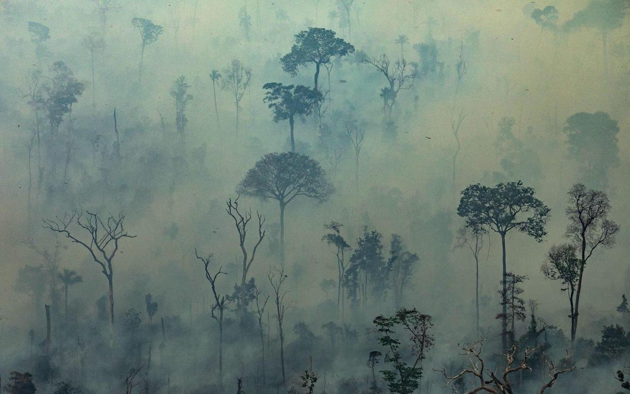 Smoke billows from fires in the forest in the Amazon biome in the municipality of Altamira, Brazil - AFP