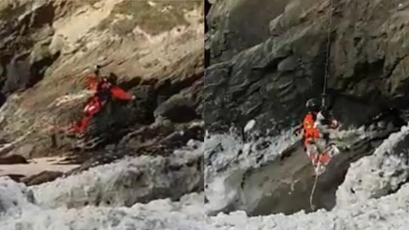 Dog immersed in sea foam rescued by helicopter after getting stuck on ledge
