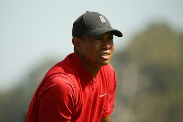 Fifteen-time major champion Tiger Woods will be inducted into the World Golf Hall of Fame in 2021 (AFP Photo/Katelyn Mulcahy)
