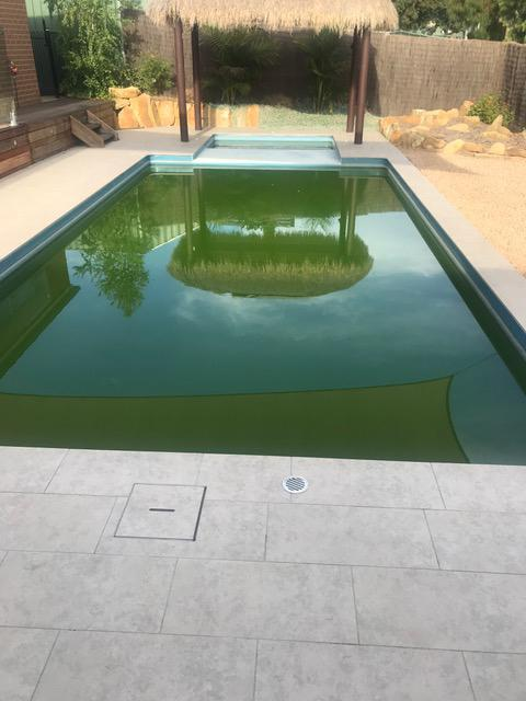 Untreated backyard pools can pose a health risk to those who swim in them. Source: Supplied