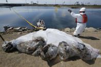 Cleanup contractors collect oil in plastic bags trying to stop further oil crude incursion into the Wetlands Talbert Marsh in Huntington Beach, Calif., Sunday, Oct. 3, 2021. (AP Photo/Ringo H.W. Chiu)