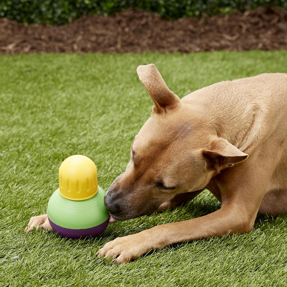 The mentally stimulating toy helps pets get exercise and stay engaged while they work to release food and treats (Photo: Starmark)