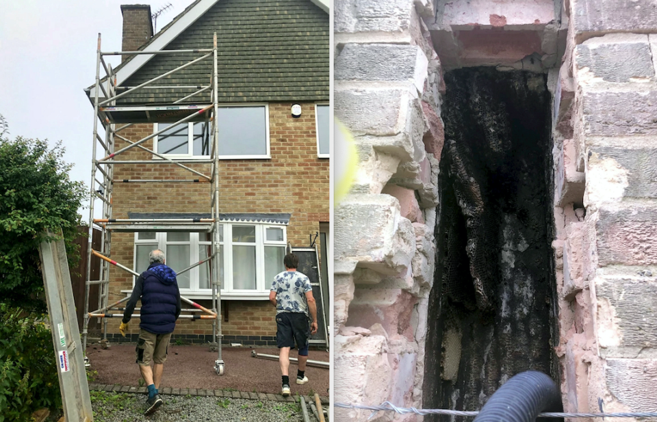 The bees were relocated after they were discovered inside a bricked-up fireplace. (SWNS)