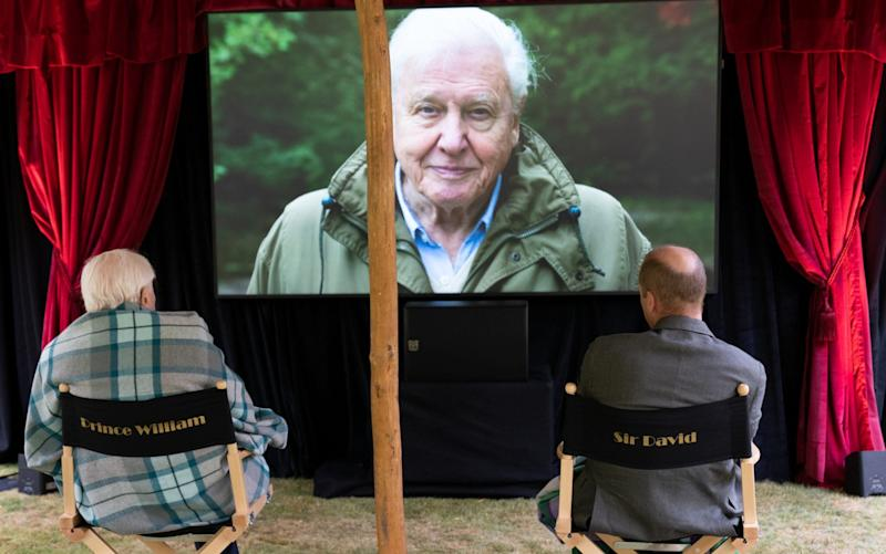 The pair settle in for a special screening of Sir David's new film, David Attenborough: A Life On Our Planet
