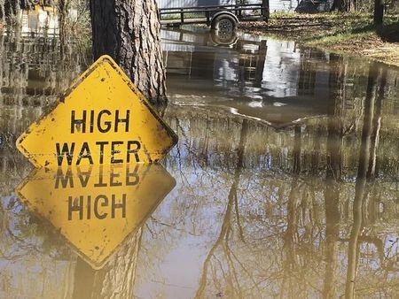 A high water sign is submerged near Lake Bistineau in Webster Parish, Louisiana March 14, 2016. REUTERS/Therese Apel