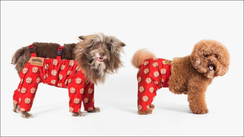 Two dogs wearing different styles of pants.