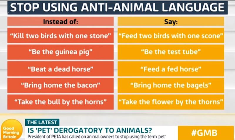 Anti-animal language