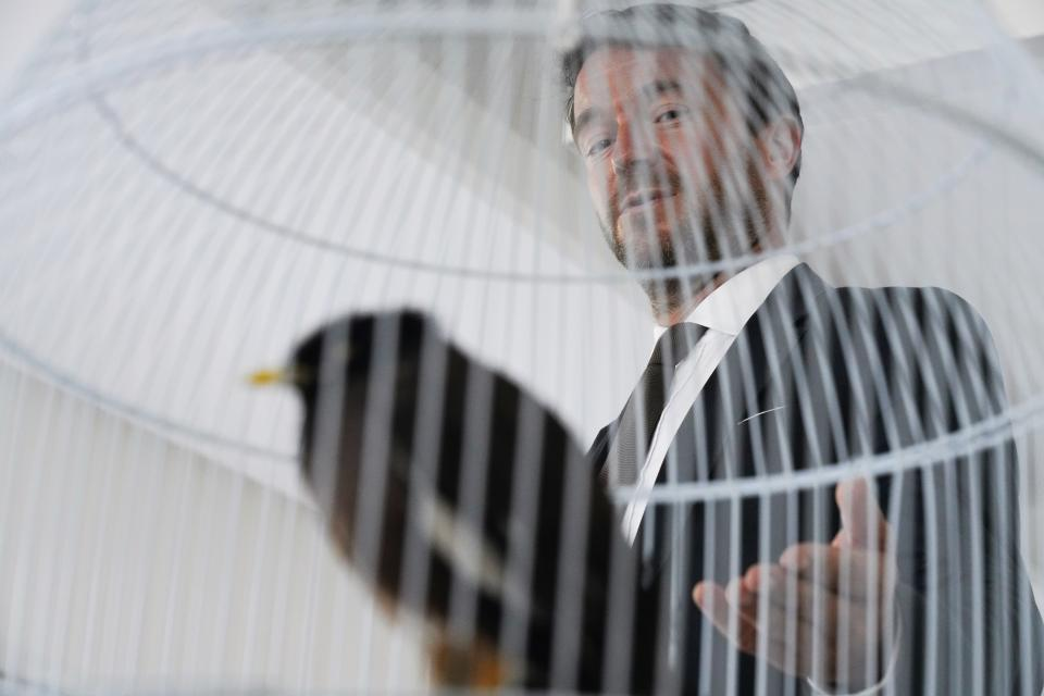 French Ambassador to the United Arab Emirates, Xavier Chatel gestures towards Juji, a rescued yellow-beaked mynah carried into the United Arab Emirates by a fleeing Afghan refugee, in Abu Dhabi, United Arab Emirates, Sunday, Oct. 10, 2021. The small bird rescued from Kabul by Chatel, during France's frantic evacuations has touched a global nerve, providing an uplifting counterpoint to the crises afflicting Afghanistan amid the Taliban takeover. (AP Photo/Jon Gambrell)