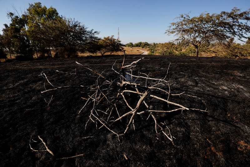 A burned field is seen after Palestinians in Gaza sent incendiary balloons over the border between Gaza and Israel, Near Nir Am