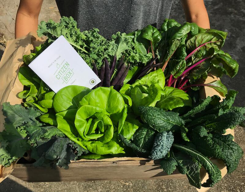 Produce from Edible Garden City. Photo: Sprout