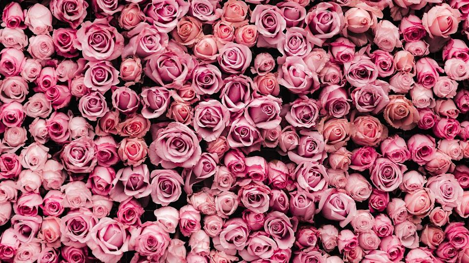 """<p>It's all coming up roses, as long as you have this pretty-in-pink image on your screen. </p><p><a class=""""link rapid-noclick-resp"""" href=""""https://go.redirectingat.com?id=74968X1596630&url=https%3A%2F%2Fwww.1800flowers.com%2Fvirtual-backgrounds&sref=https%3A%2F%2Fwww.goodhousekeeping.com%2Fholidays%2Fvalentines-day-ideas%2Fg35192608%2Fvalentines-day-zoom-backgrounds%2F"""" rel=""""nofollow noopener"""" target=""""_blank"""" data-ylk=""""slk:DOWNLOAD HERE"""">DOWNLOAD HERE</a><br></p>"""
