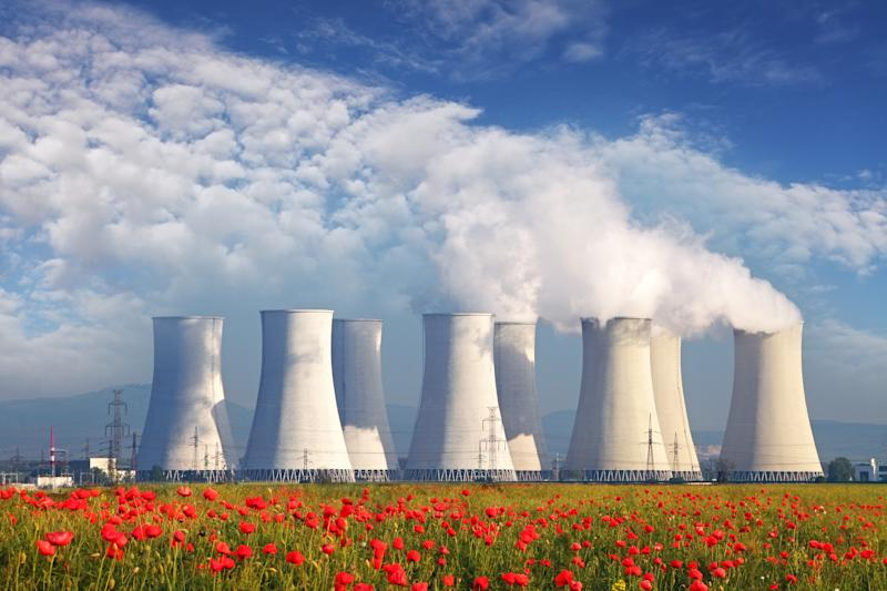 Nuclear power plant in the distance with flowers in the foreground