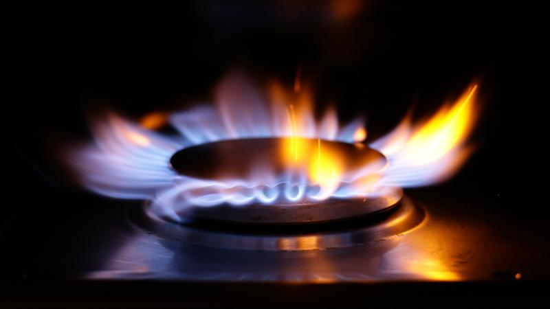 Challenger brands dominate energy supplier satisfaction survey