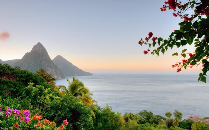St Lucia attracts 70,000 Britons a year - Wildroze