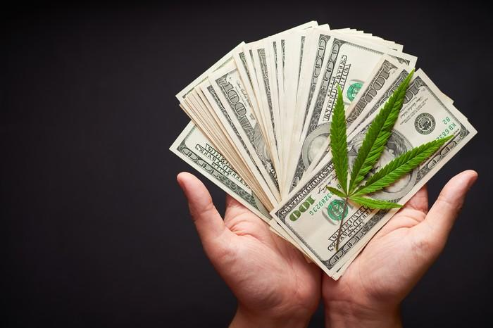 Hands holding $100 bills fanned out and a cannabis leaf on top of the money