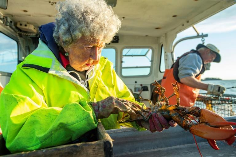 Virginia Oliver -- known as the 'Lobster Lady' in her native Maine, in the northeastern United States, has been trapping lobsters for over nine decades