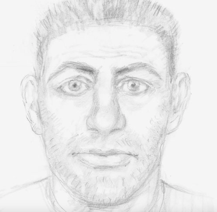 <em>Police have released this e-fit of an alleged sex attacker following the attempted rape of an 11-year-old girl (West Midlands Police)</em>