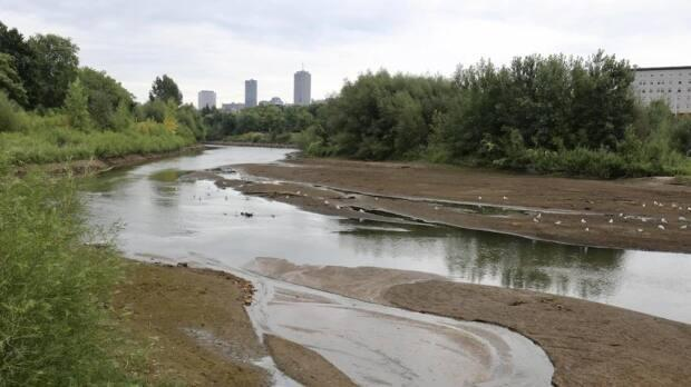 Water levels at the Saint-Charles River are exceptionally low. (Carl Boivin/Radio-Canada - image credit)